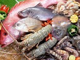 Tiêu thụ thủy sản Trung Quốc tăng do lo ngại dịch cúm gia cầm
