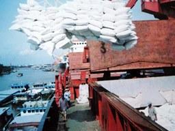 Việt Nam tăng cường bán gạo vào châu Phi