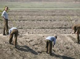 Triều Tiên cầu cứu viện trợ lương thực từ Mông Cổ