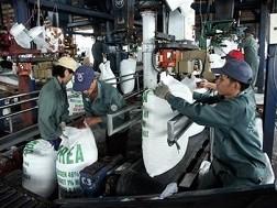 Kiến nghị phân bón là mặt hàng sản xuất có điều kiện