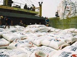 Philippines sẽ xuất khẩu gạo vào tháng 5 tới