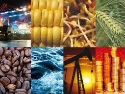 Giá hàng hóa nguyên liệu giảm 2% sau số liệu sản xuất Trung Quốc
