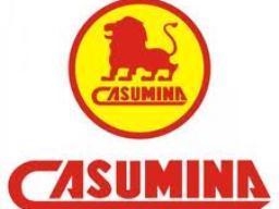Casumina thông qua trả cổ tức năm 2012 là 30%