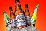 Bốn đại gia thống lĩnh thị trường bia thế giới cạnh tranh