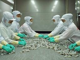 Thủy sản Minh Phú mua 630 nghìn cổ phiếu quỹ