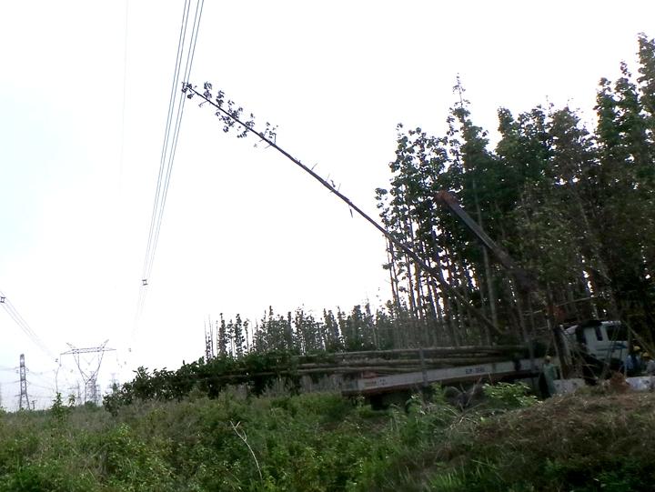 EVN: Dự kiến chiều tối nay các tỉnh miền Nam sẽ được cấp điện trở lại