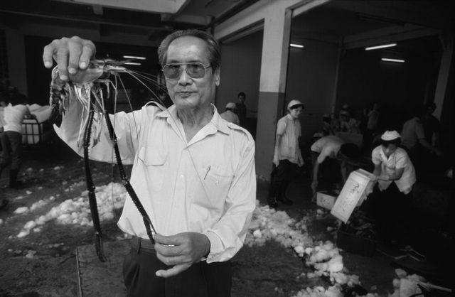 Thị trường Sài Gòn năm 1988, những hình ảnh ký ức