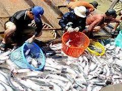 Cổ đông lớn Lê Thị Minh Hiền đã bán hơn 692 nghìn cổ phiếu CMX