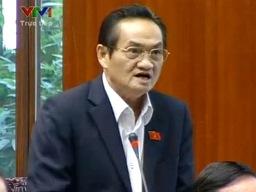 Đại biểu Trần Du Lịch: Chính quyền địa phương chỉ cần 2 thay vì 4 cấp