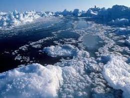 Bắc Cực có thể trở thành điểm nóng kinh tế mới của thế giới