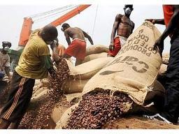 EU thắt chặt quy định nhập khẩu ca cao từ châu Phi
