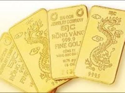 Tiếp tục đấu thầu 26.000 lượng vàng vào ngày mai