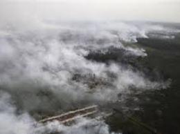 Indonesia làm mưa nhân tạo dập cháy rừng