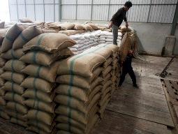 Chương trình thu mua tạm trữ gạo của Thái Lan: Được hay mất của nữ thủ tướng?