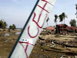Hơn 200 người thương vong vì động đất ở Indonesia