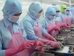 Đề nghị Mexico hủy bỏ lệnh cấm nhập khẩu tôm đông lạnh Việt Nam