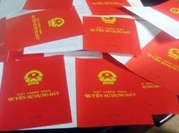 Hà Nội yêu cầu báo cáo việc cấp sổ đỏ