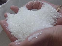 Sản lượng đường Mexico đạt kỷ lục 7 triệu tấn