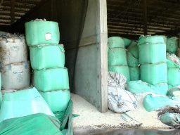 Doanh nghiệp xuất khẩu lo ngại chất lượng gạo tạm trữ Thái Lan