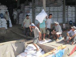 Hủy hàng loạt hợp đồng xuất khẩu gạo do giá tăng