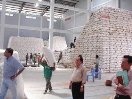 Campuchia cạnh tranh mạnh với Việt Nam trên thị trường gạo thế giới