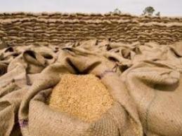 Indonesia sẽ nhập khẩu lúa mỳ nhiều nhất thế giới