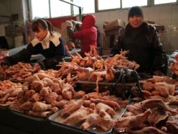 Cuộc chiến thịt gà Trung Quốc - Mỹ đến hồi kết