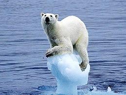 Trái đất đang biến đổi khí hậu dữ dội nhất trong 65 triệu năm