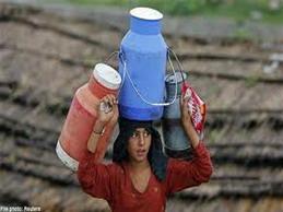 Sữa Ấn Độ: Cờ đến tay thì phải phất!