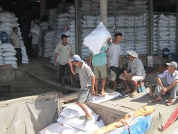 Nhiều hợp đồng xuất khẩu gạo bị hủy