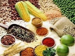 FAO: Chỉ số giá lương thực toàn cầu giảm 3 tháng liên tiếp