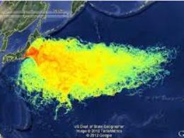 Hàng trăm tấn nước thải nhiễm xạ rò rỉ ra biển từ nhà máy Fukushima