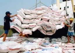 Việt Nam có thể không đạt mục tiêu xuất khẩu gạo 2013