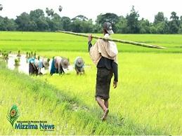 Myanmar: Thương nhớ cánh đồng xanh