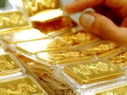 Dư 200 lượng vàng phiên đấu thầu hôm nay