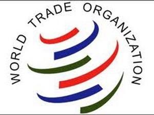WTO hạ dự báo tăng trưởng thương mại toàn cầu xuống 2,5%