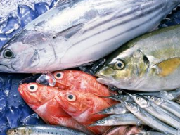 Nhu cầu thủy sản của Trung Quốc ngày càng tăng