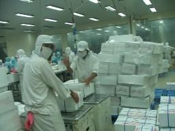 Lo Việt Nam sắp hụt sản lượng, nước ngoài mua mạnh cá tra