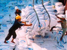 VFA: Xuất khẩu gạo tháng 9 thấp nhất trong 7 tháng