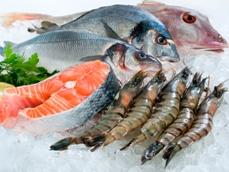 Agifish chào bán thành công 12,69 triệu cổ phiếu AGF