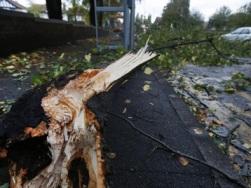 Bão lớn hoành hành tại châu Âu làm 11 người chết