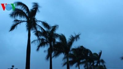 Cập nhật tình hình bão lúc 8h sáng nay
