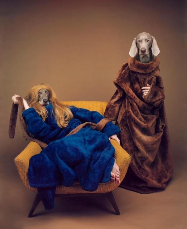 Nhiếp ảnh gia huyền thoại của những chú chó