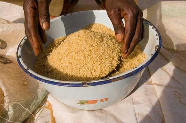 Giá thực phẩm thế giới giảm nhưng vẫn ở mức cao do lo ngại về thời tiết