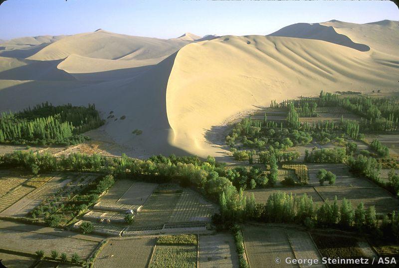 Trung Quốc: Đất ô nhiễm không thể canh tác đã vượt quá 50 triệu mẫu