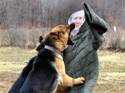 Triều Tiên: Jang Song-thaek bị chó xé xác có lẽ chỉ là tin đồn