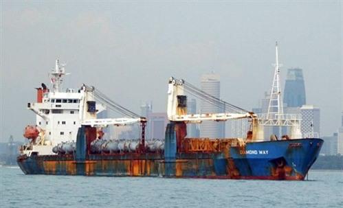 Vinalines phải chủ động bán tàu để giảm lỗ
