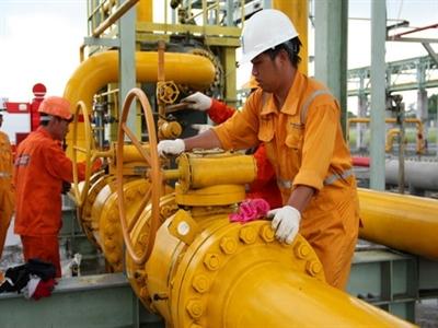 Nhà máy điện Cà Mau ngừng hoạt động vì sự cố nguồn cung khí