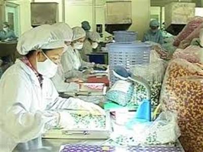 Dược phẩm Cửu Long giảm lãi 5,4 tỷ đồng sau kiểm toán