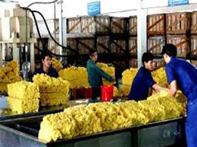Giá cao su tăng trở lại do Trung Quốc kích cầu, số liệu kinh tế Mỹ lạc quan